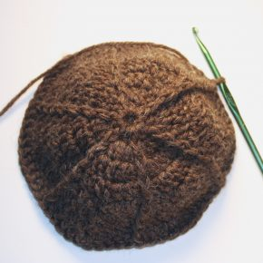 The top of a brown hat, yarn, and a crochet hook